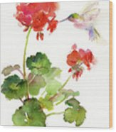 Hummingbird With Geranium Wood Print