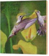 Hummingbirds In Virginia Wood Print