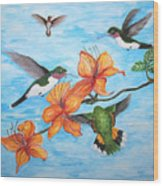 Hummingbirds Wood Print