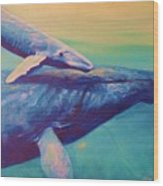 Humpback Whale And Calf Wood Print