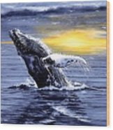 Humpback Whale Breaching Wood Print