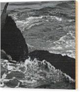 Humpback Whale Fluke 3 Wood Print