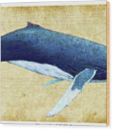 Humpback Whale Painting - Framed Wood Print