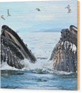 Humpback Whales In Juneau, Alaska Wood Print