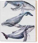 Humpback Whales Wood Print