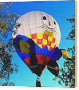 Humpty Dumpty Balloon Wood Print