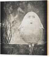 Humpty Dumpty Wood Print by Bob Orsillo