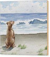 Hungarian Vizsla At The Beach Wood Print