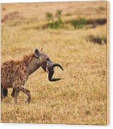 Hungry Hyena Wood Print