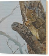 Hungry Squirrel Wood Print