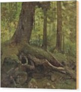 Hunter_in_the_white_mountains_near_glen_house Wood Print