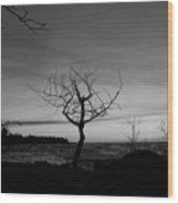 Hunters Point  Wood Print