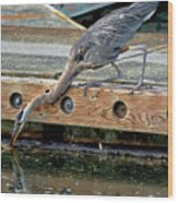 Hunting Heron Wood Print