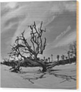 Hunting Island Beach And Driftwood Black And White Wood Print