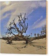 Hunting Island Beach And Driftwood Wood Print