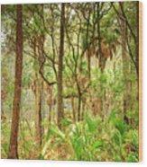 Hunting Island State Park Wood Print