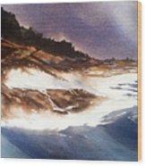 Hurricane '03' Halifax Wood Print by Don F  Bradford