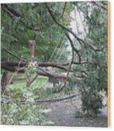 Hurricane Irene Wood Print