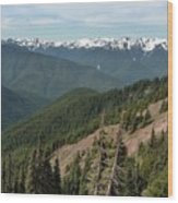 Hurricane Ridge View Wood Print