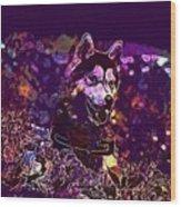 Husky Dog Pet Canine Purebred  Wood Print