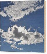 Huson River Clouds 1 Wood Print