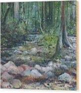 Hutan Perdic Forest Malaysia 2016 Wood Print