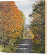 Huyck Preserve Fall Wood Print