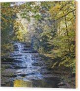 Huyck Preserve Falls Wood Print