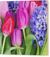 Hyacinth And  Tulip Flowers Wood Print