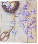 Hyacinth Flowers And Nest Wood Print