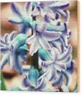 Hyacinth Photo Manipulation  Wood Print