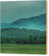 Hyatt Lane View Wood Print