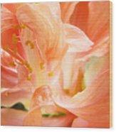 Hybiscus Interior Wood Print