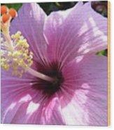 Hybiscus Smile Wood Print