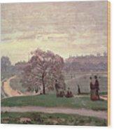 Hyde Park Wood Print
