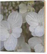 Hydrangea Fractalius Wood Print