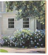 Hydrangea Heaven Wood Print