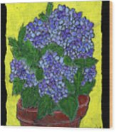 Hydrangea In A Pot Wood Print