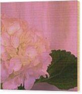 Hydrangea In Pink Wood Print