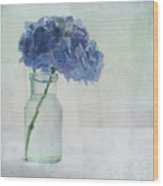 Hydrangea Wood Print by Jill Ferry