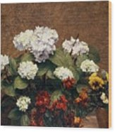 Hydrangeas And Wallflowers And Two Pots Of Pansies Wood Print