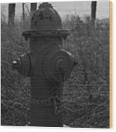 Hydrant Wood Print