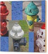 Hydrants 2 Wood Print