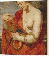 Hygeia - Goddess Of Health Wood Print by Peter Paul Rubens