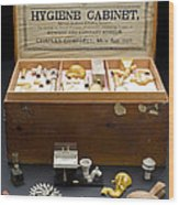 Hygienic Sanitary Appliances, 1895 Wood Print