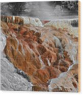 Hymen Terrace Mammoth Hot Springs Yellowstone Park Wy Wood Print