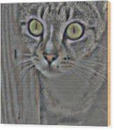 Hypnotize Wood Print