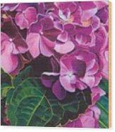 Hyrangea Wood Print