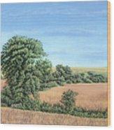 I-74 Soybean Field Wood Print