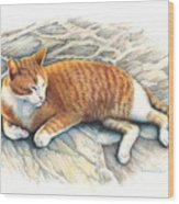 I Am Tiger Wood Print